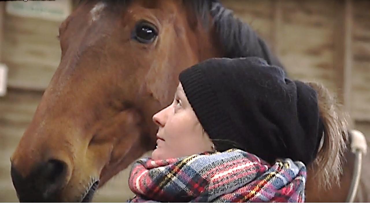 Démonstration Accompagnement managérial assisté par le cheval