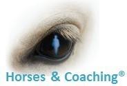 Prochains démarrages accompagnements assistés par le cheval avec Horses & Coaching